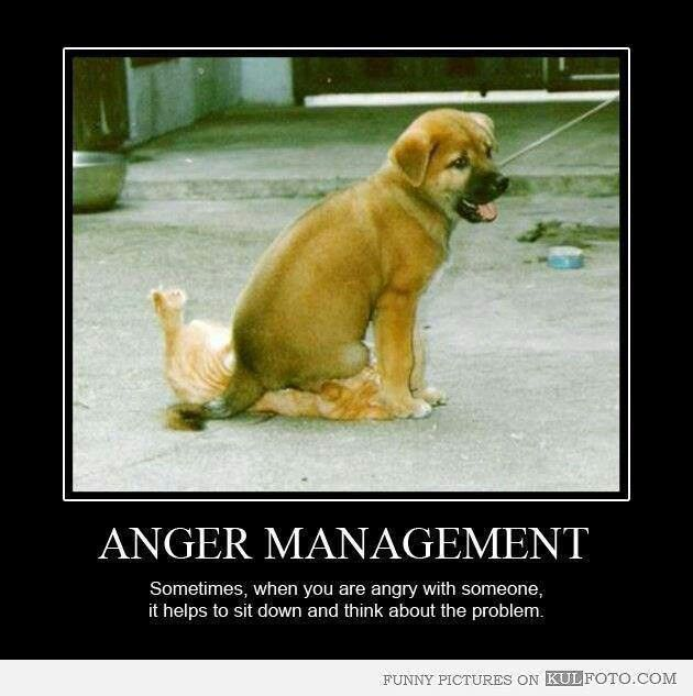 Funny Quotes Anger Management. QuotesGram