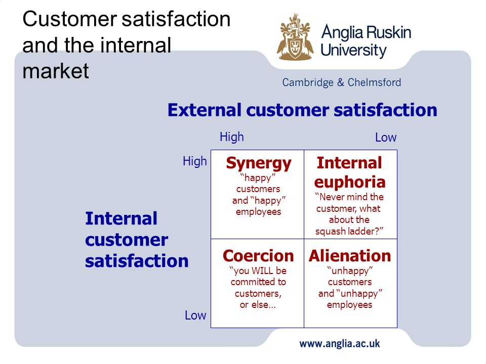 what is a internal customer An internal customer is a customer who is directly connected to an organization, and is usually (but not necessarily) internal to the organization.