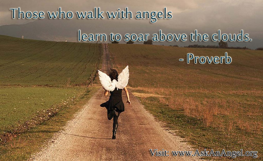 Soar With The Angels Quotes. QuotesGram