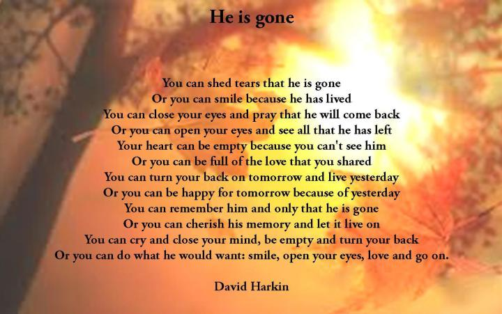 My Brother Gone Too Soon Quotes. QuotesGram