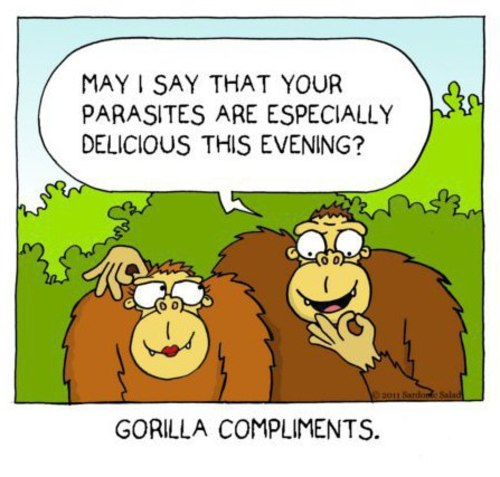 959 best {Quotes & Sayings} Funny Puns images on Pinterest ... |Funny Pun Compliment Quotes