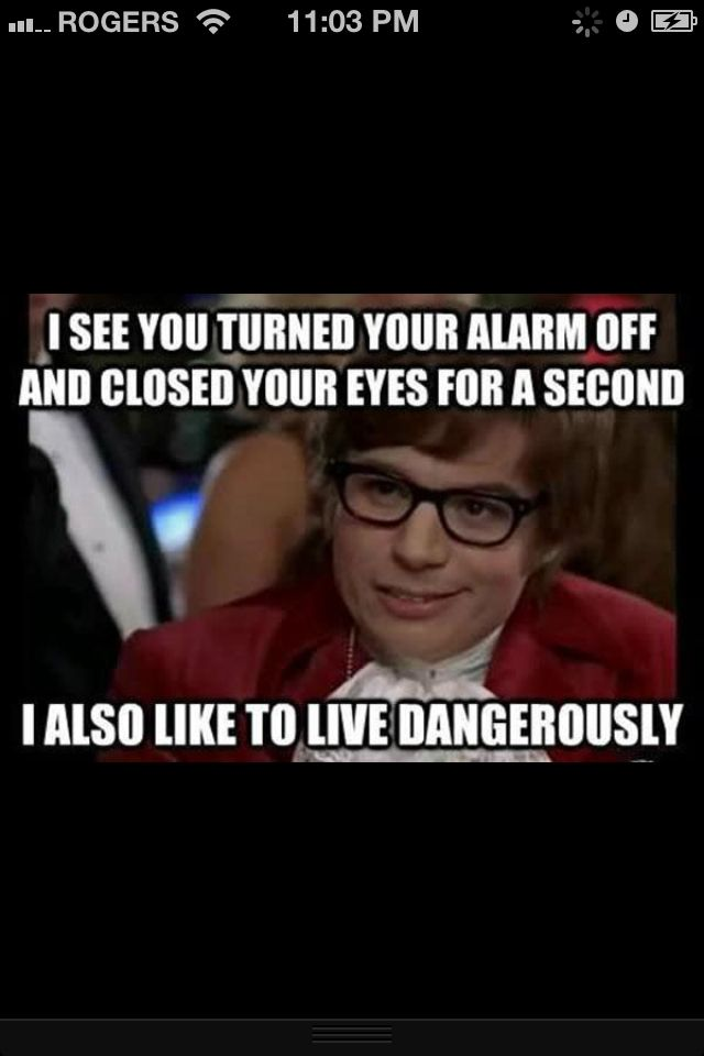 Austin Powers Quotes Meme Quotesgram