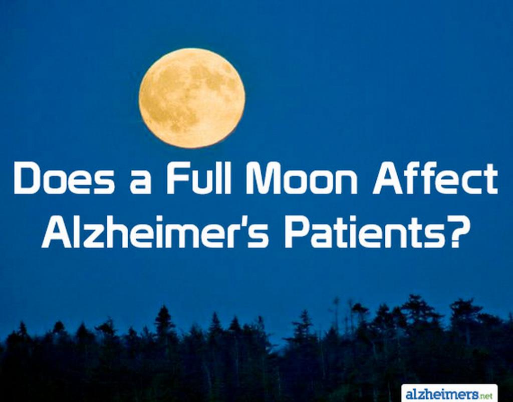 Full Moon Crazy Quotes. QuotesGram