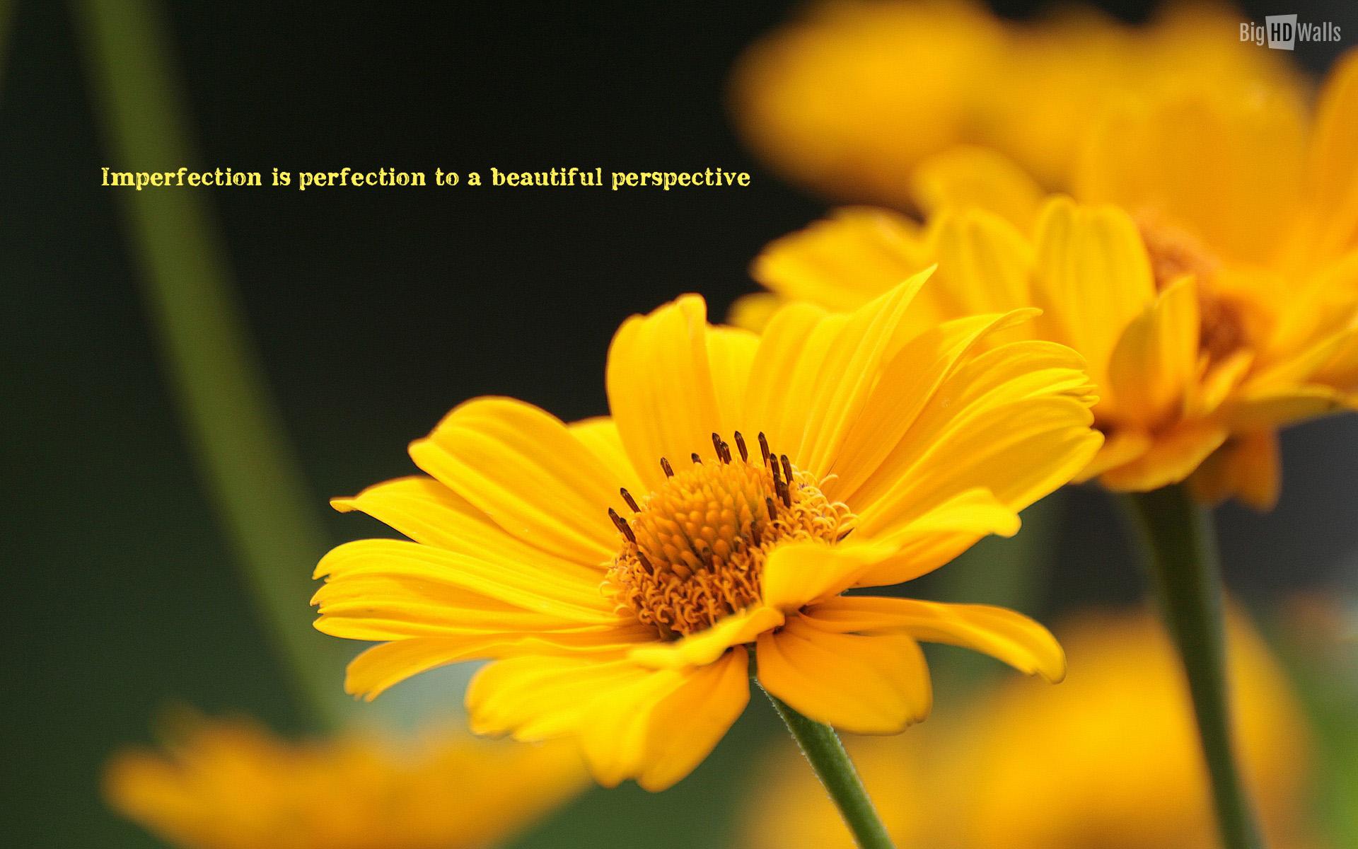 Happy Flower Quotes Quotesgram 44 Quotes