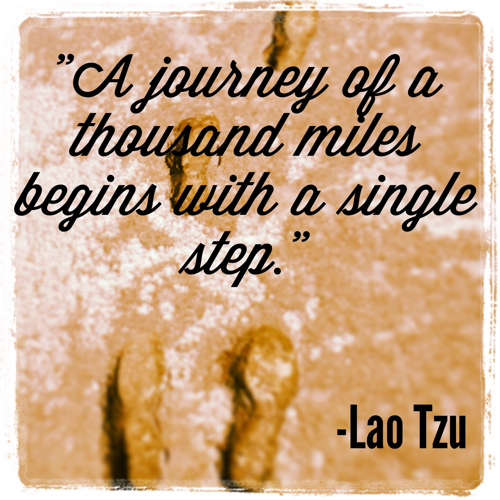 abortion and lao tzu's philosophy in Lao tzu's teachings about taoism is that it requires man to be in harmony with nature, to understand the concept of yin and yang and to let the course of nature continue and not interfere.