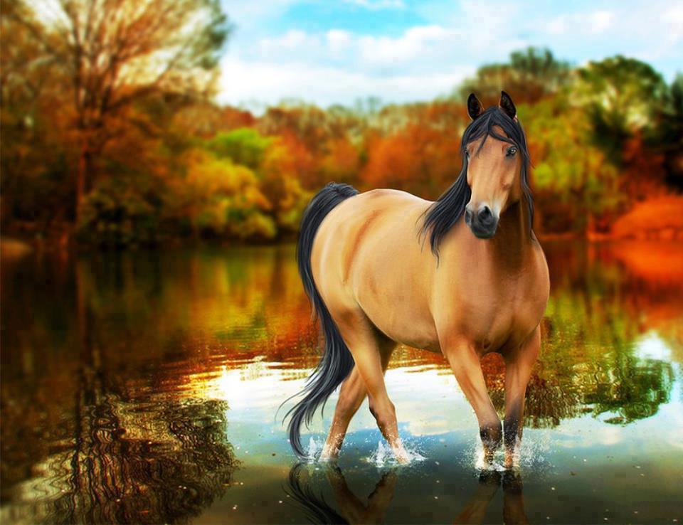 Native American Spirit Horse Quotes. QuotesGram