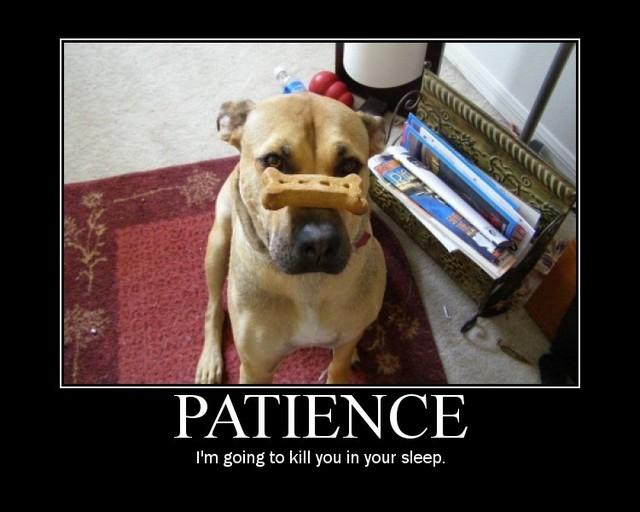 Losing Patience Quotes. QuotesGram