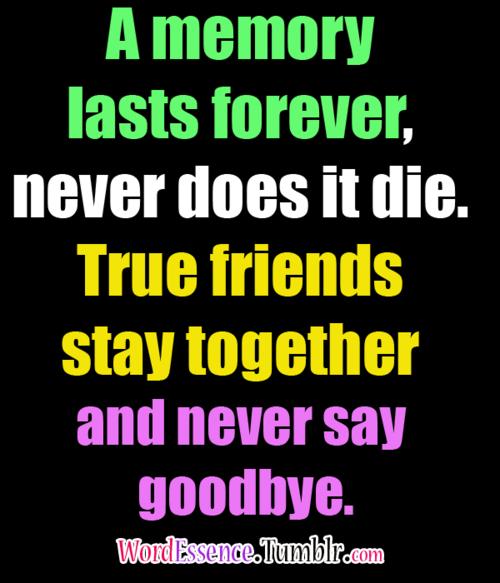 Friendship Memories Quotes