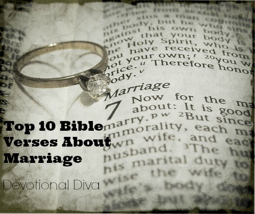 gay marriage vs the bible And consensus & constitution-- vs the marriage amendment  so this essay on biblical government is appropriate to a wider range of  the bible gives a.