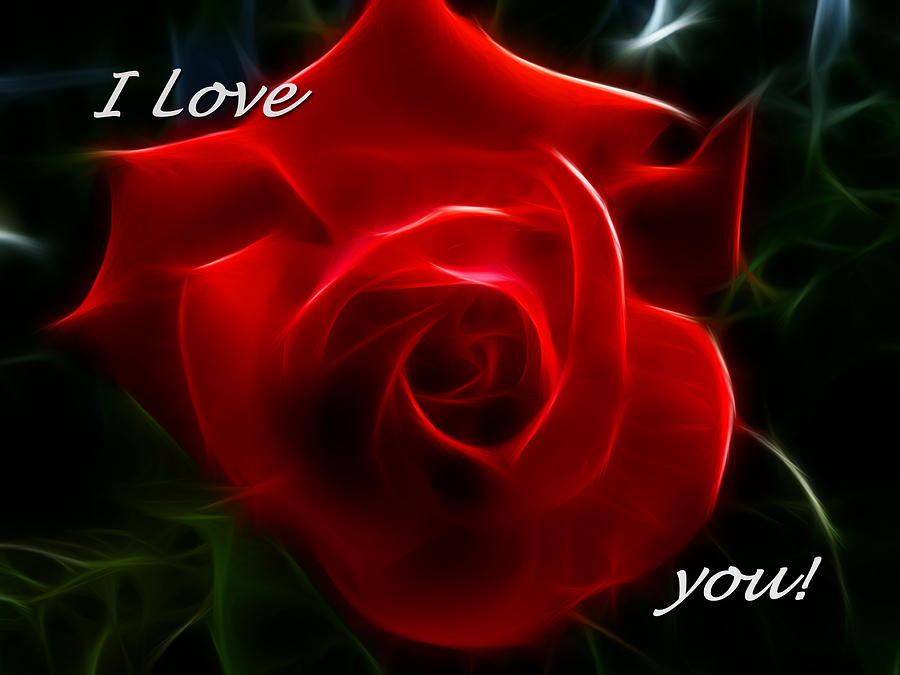 Love You Quotes With Roses. QuotesGram