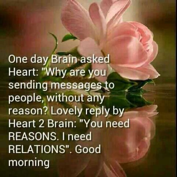 brainy quotes good morning images