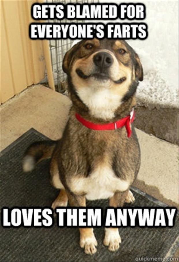 Dog Fart Quotes Quotesgram
