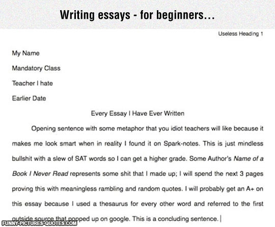 Essay writing my teacher