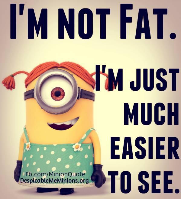 Fat Jokes Quotes. QuotesGram