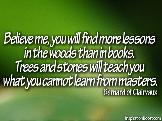 St Bernard Of Clairvaux Quotes: Bernard Of Clairvaux Quotes Motivational Sayings. QuotesGram