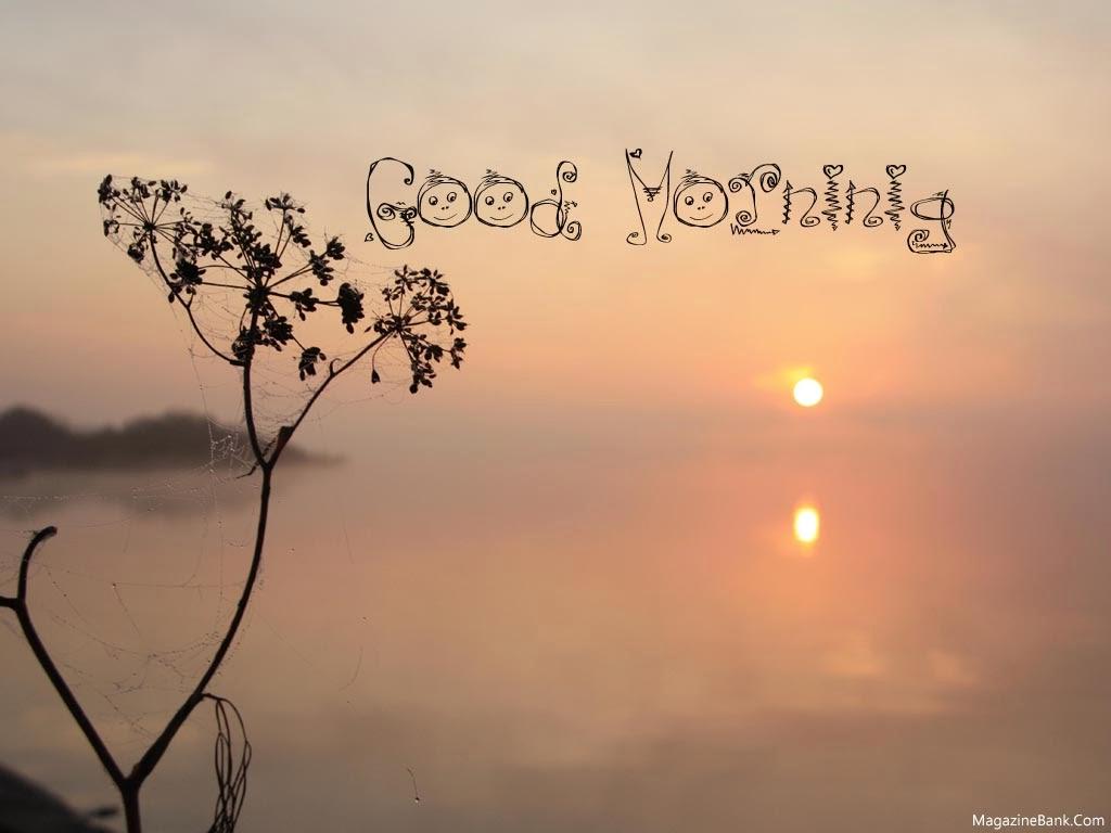 Best Good Morning Quotes Quotesgram: Good Morning Beautiful Quotes. QuotesGram