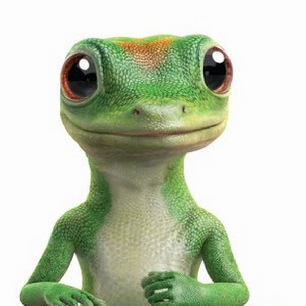 Geico Lizard Quotes In 15 Minutes Quotesgram