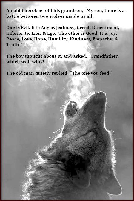 Wolf Wisdom Quotes Quotesgram