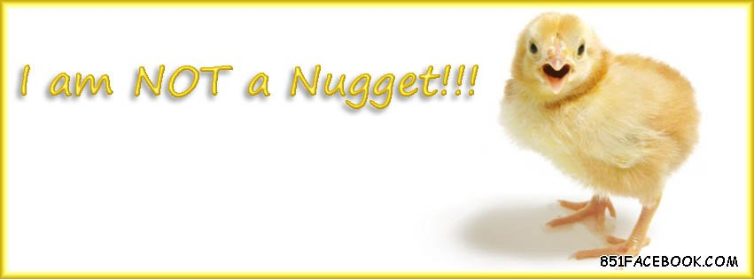 Chickens Quotes Quotesgram: Quotes About Chicken Nuggets. QuotesGram