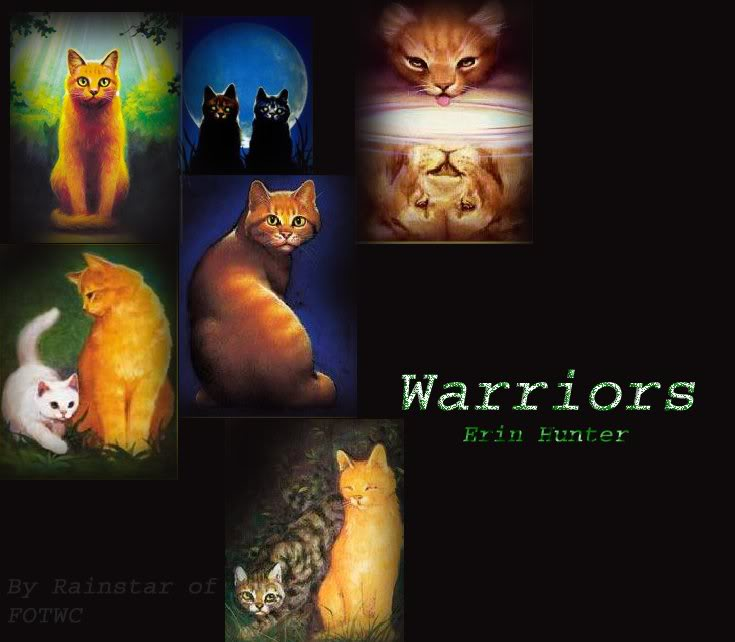 Warriors Into The Wild Movie By Erin Hunter: Warror Erin Hunter Quotes. QuotesGram