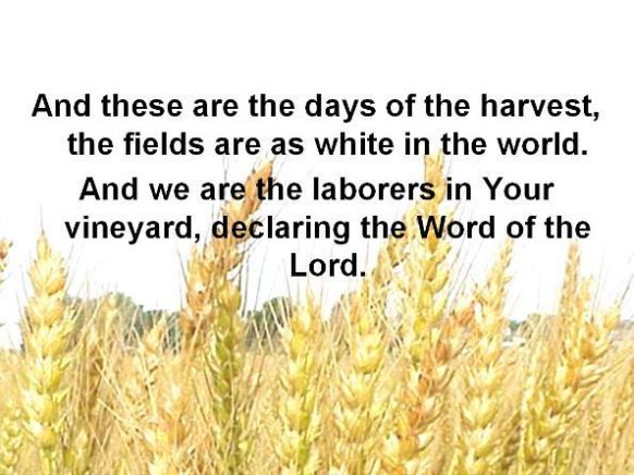 Harvest Quotes From Bi...