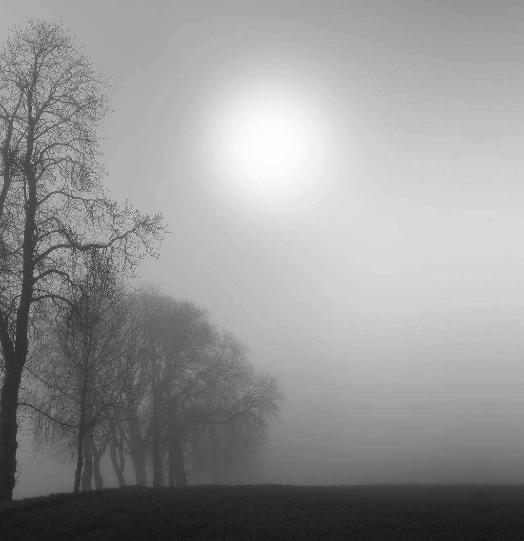Morning Fog Quotes. QuotesGram