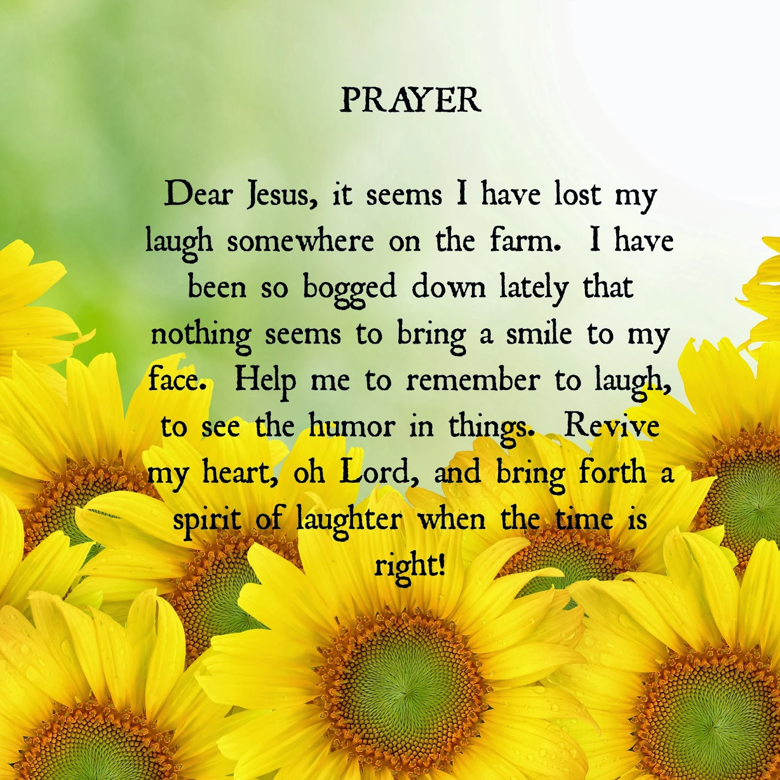 Sunflower Christian Quotes. QuotesGram