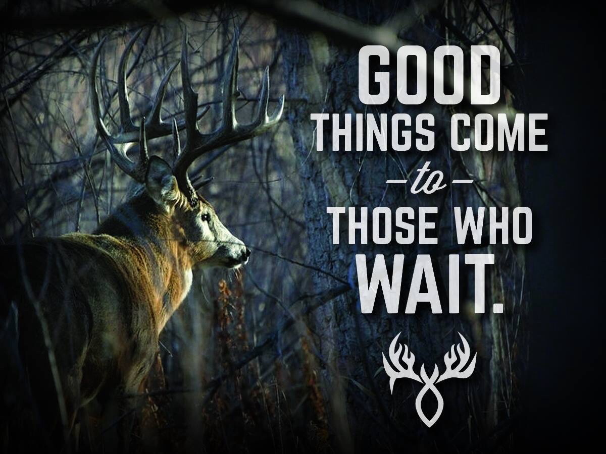 Good Luck Deer Hunting Quotes Quotesgram