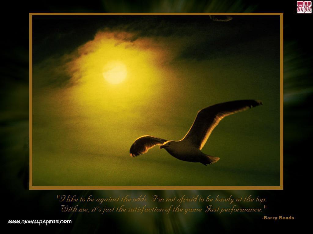 Inspirational Quotes Motivation: Hope Motivational Quotes. QuotesGram