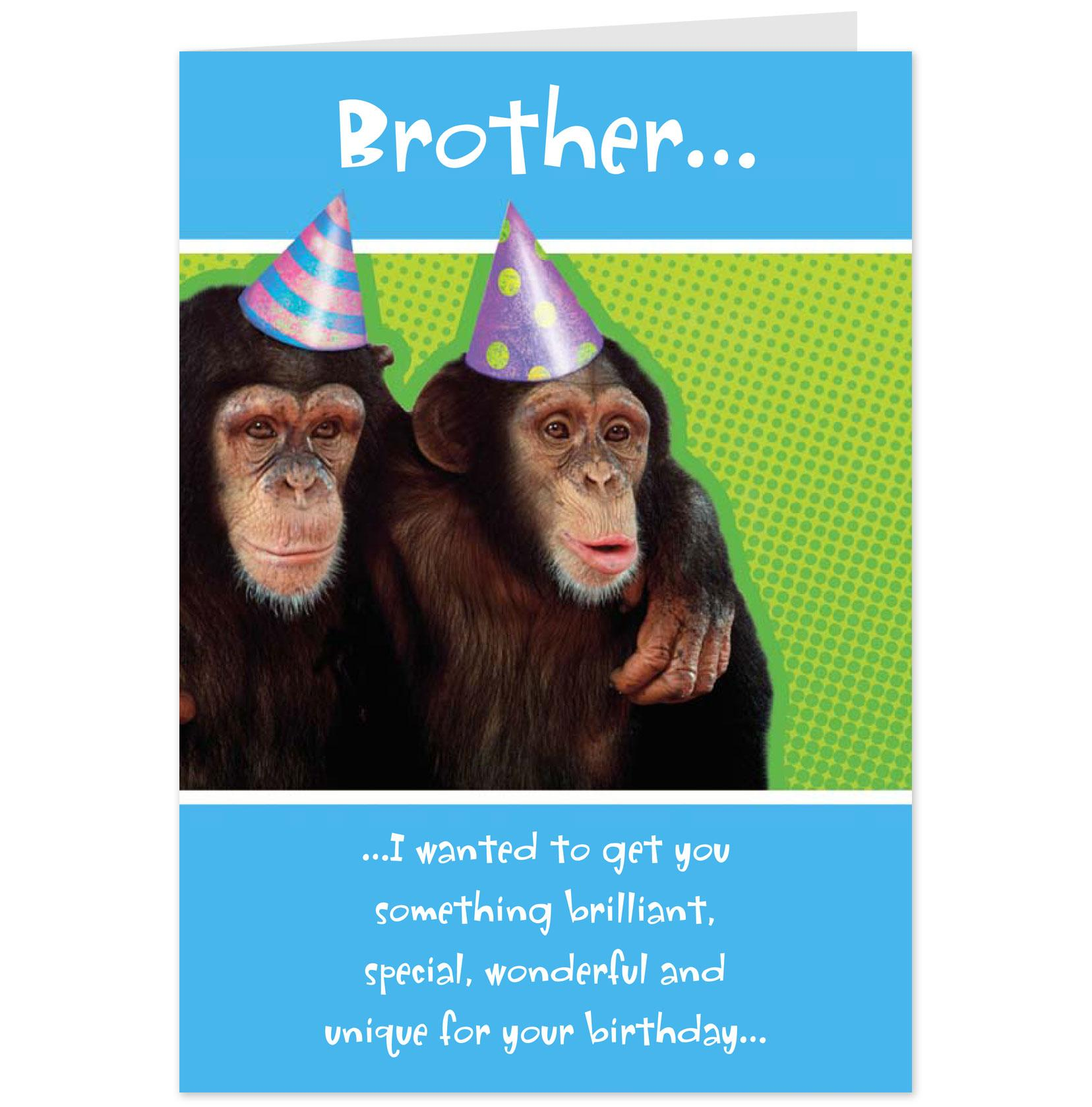 Hilarious Birthday Quotes For Brother. QuotesGram