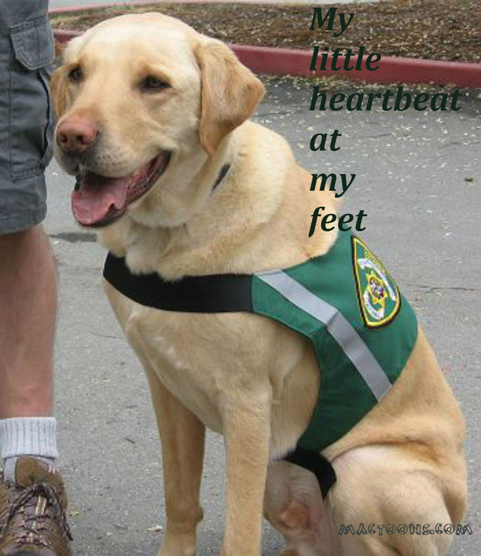 Famous Service Dog Quotes