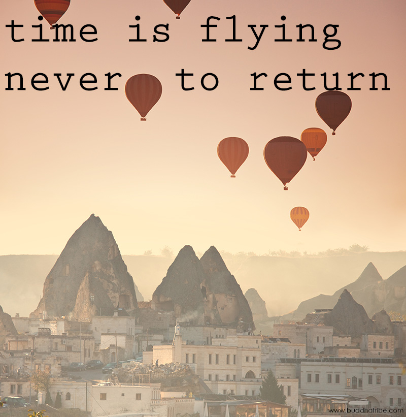 Flying Quotes: Quotes About Time Flying By. QuotesGram