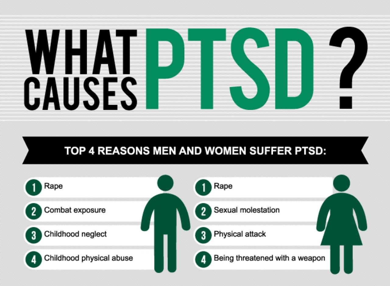 essay on post traumatic stress disorder
