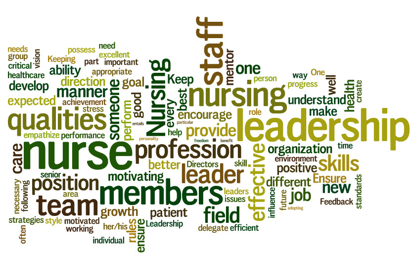 leadership management in nursing Theories and principles of leadership and management print reference this apa mla mla-7 harvard there is always a relationship between leadership and management in nursing her leadership and management style permeated nursing management for decades.