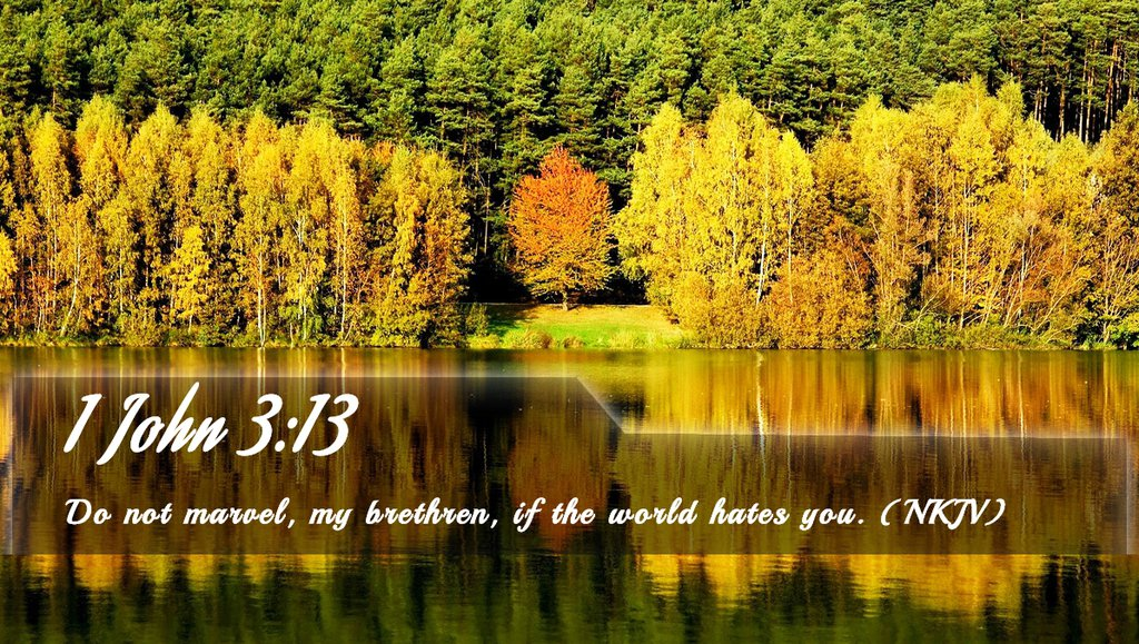 bible quotes john 3 15 quotesgram