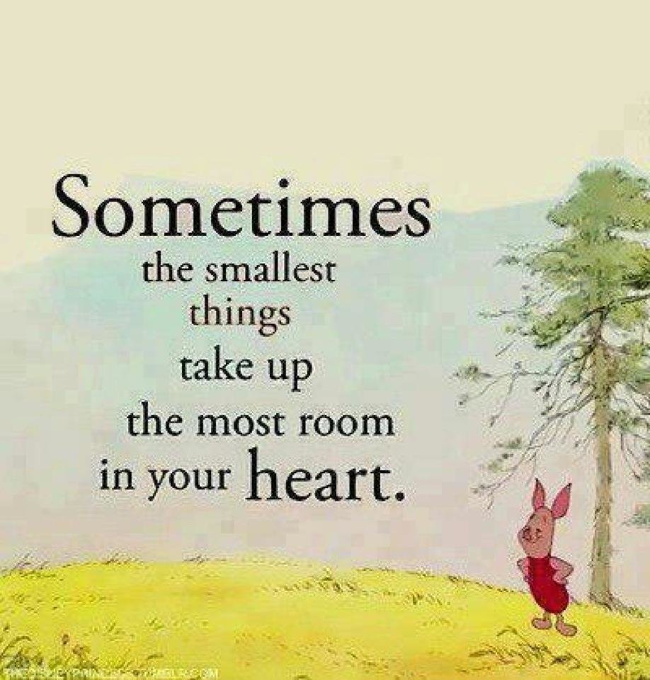 Image Result For Family Quotes Winnie The
