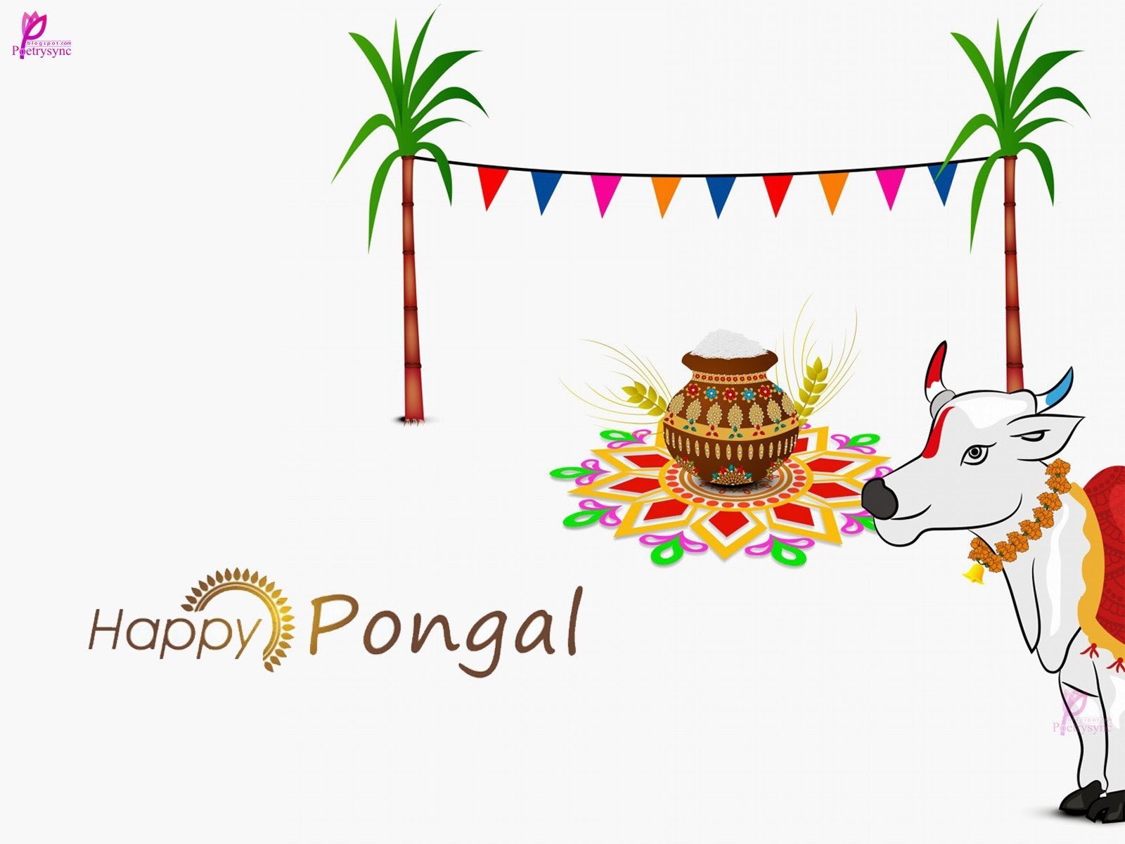 harvest festival pongal Pongal, one of the most important popular hindu festivals of the year, is  essentially an agricultural and harvest festival celebrated in tamil nadu.