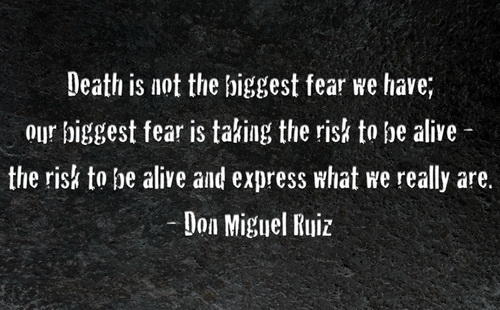 quotes about not fearing quotesgram