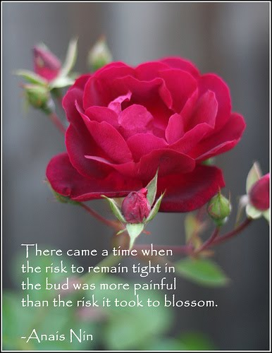 Beautiful Flower Quotes Inspirational