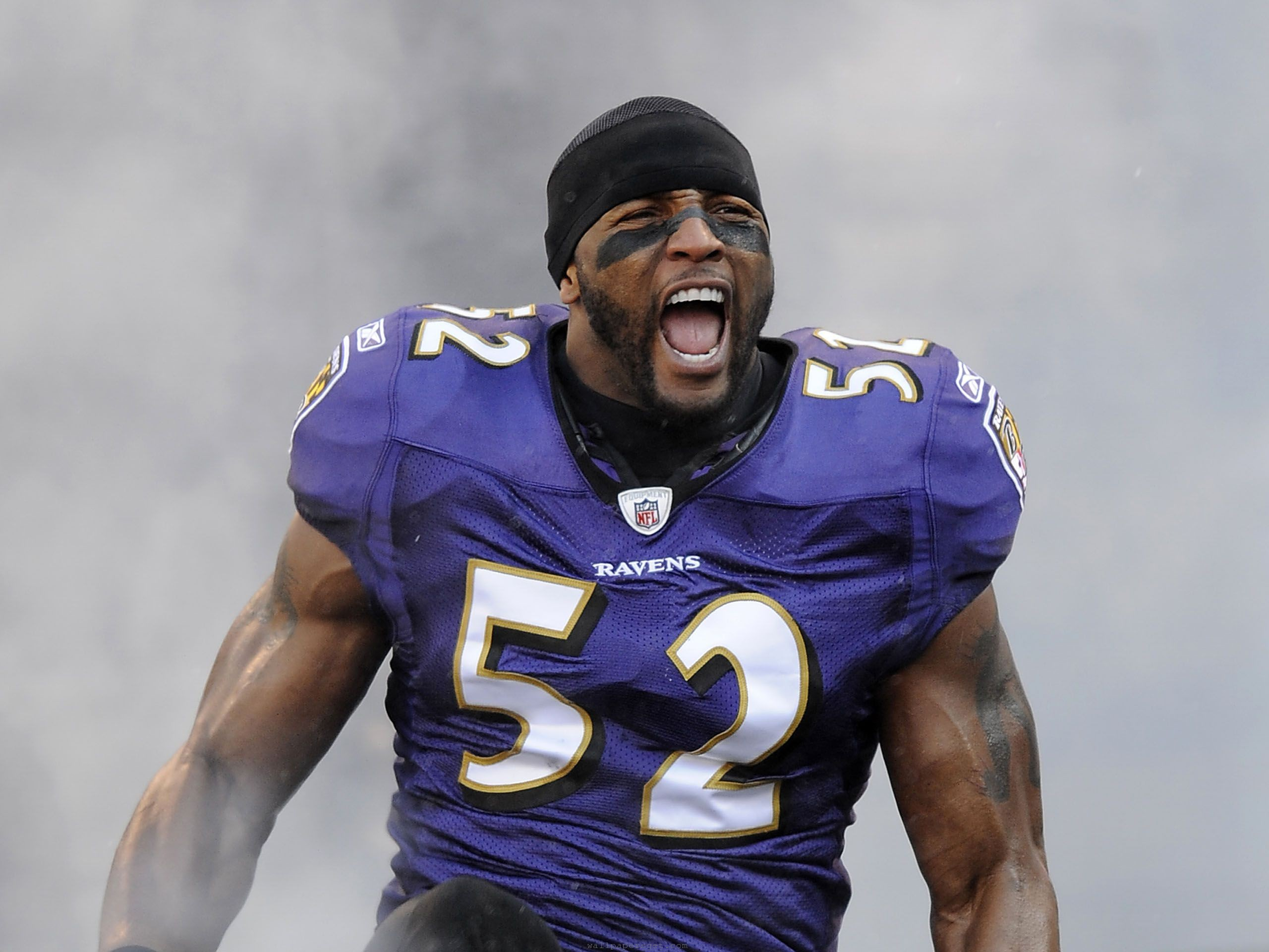 Baltimore Ravens Ray Lewis Quotes: Baltimore Ravens Funny Quotes. QuotesGram