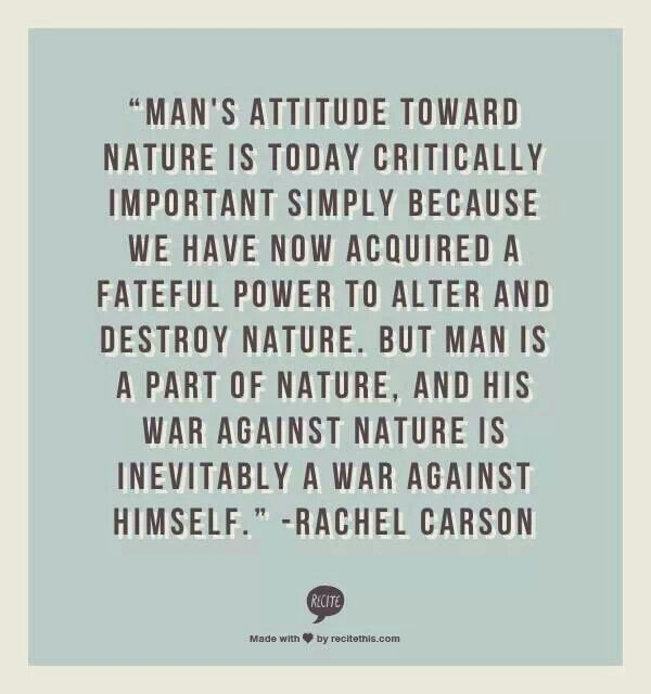 Carson Quotes: Rachel Carson Quotes On Trees. QuotesGram