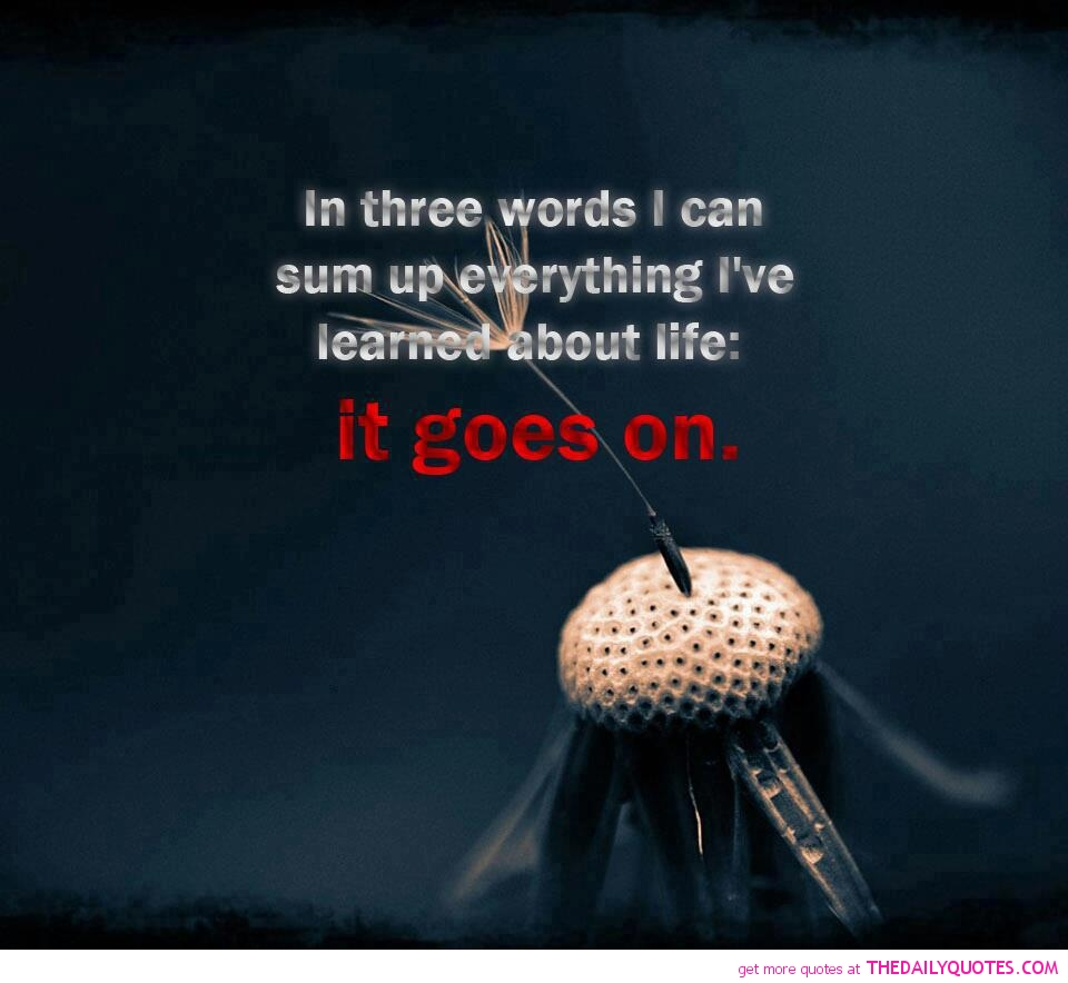 Life Sayings And Quotes Pictures: Life Goes On Quotes And Sayings. QuotesGram