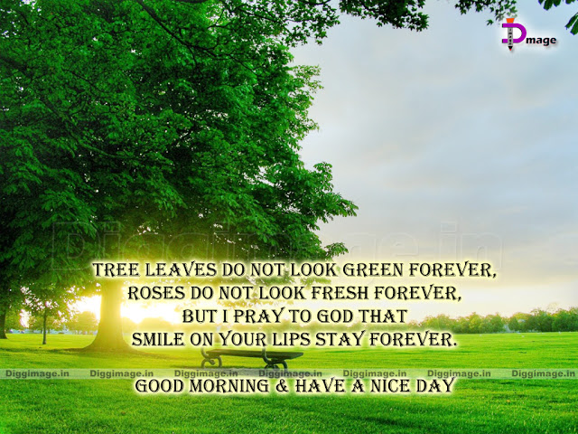 Nature In The Morning Quotes. QuotesGram