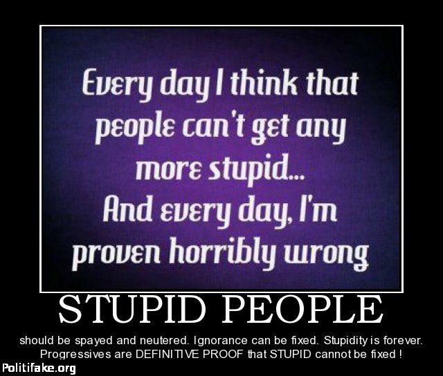 Funny Quotes About Stupid People: Funny Quotes About Stupidity And Ignorance. QuotesGram