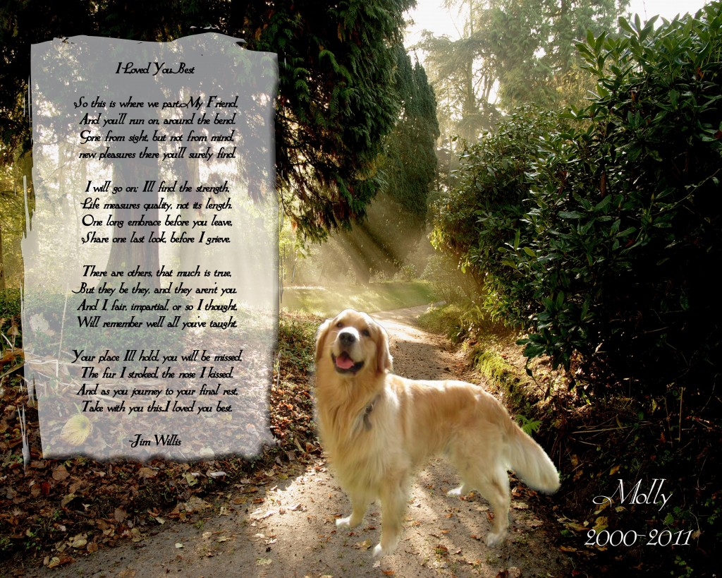 When A Dog Dies Quotes Quotesgram: Dog Memorial Sayings Quotes. QuotesGram