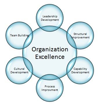 Measuring the Success of Organization Development (2013)