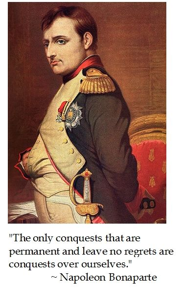 describing the leadership of napoleon bonaparte Everything you ever wanted to know about napoleon (a pig) in animal farm,  written by masters of this stuff just for you  it's only after the animals have  rebelled that he takes a leadership role  napoleon bonaparte is kind of a big  deal.
