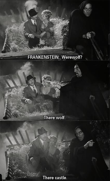 Young Frankenstein Movie Quotes. QuotesGram