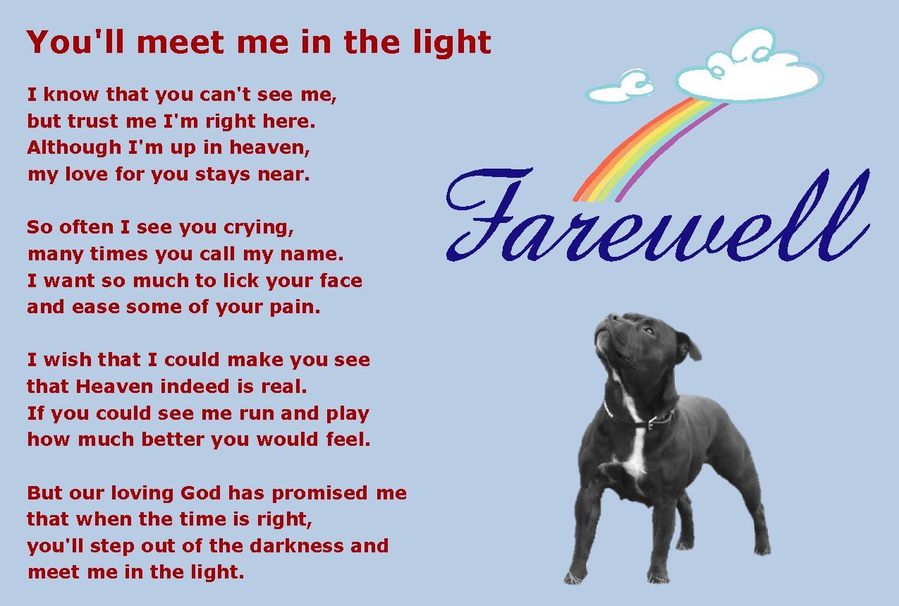 Rip Dog Quotes. QuotesGram