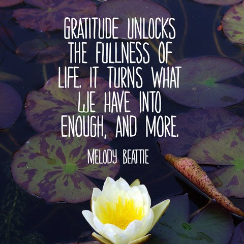 quotes about being grateful quotesgram